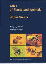 Cover of: Atlas of plants and animals in Baltic amber